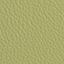 AN-Koženka zelená